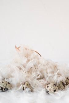 羽のヒープ間のイースターのウズラの卵