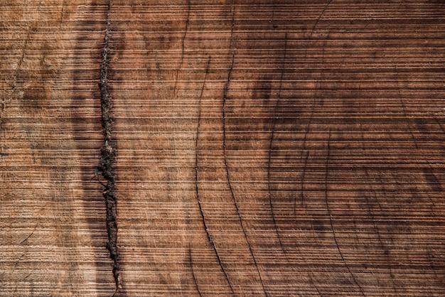 グランジの木のテクスチャ背景