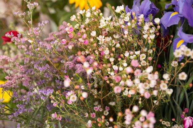 小さな春の花の花束のクローズアップ