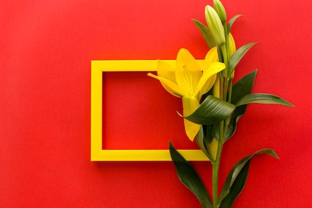 美しい黄色のユリの花と赤い背景の空の空白フレーム