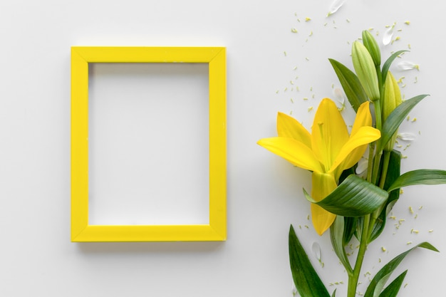 白い表面上の空白の空のフォトフレームと新鮮な黄色いユリの花の立面図