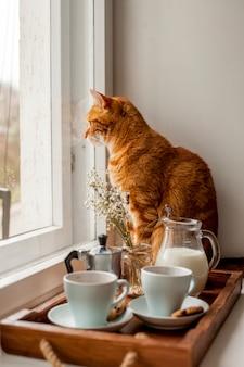 猫と一緒に朝食トレイ