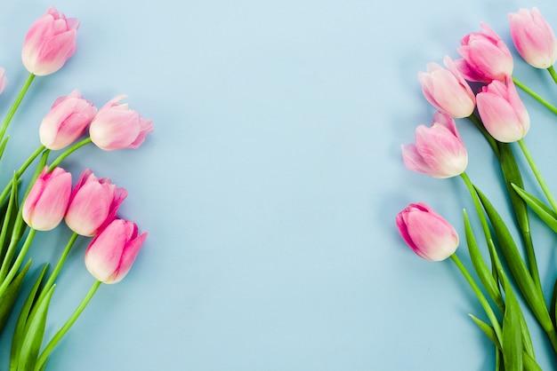 青いテーブルの上の明るいチューリップの花