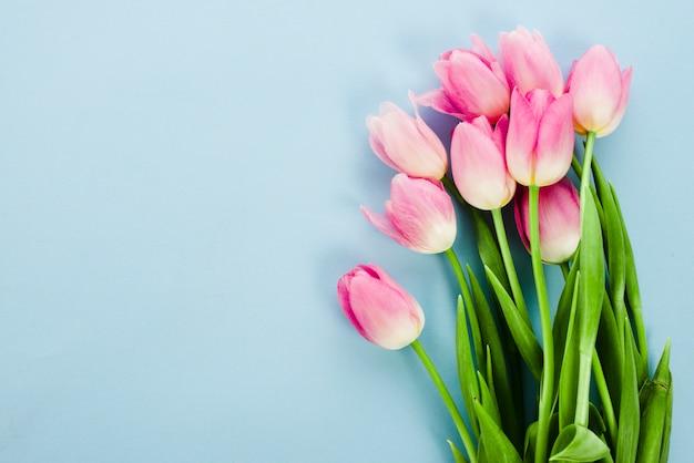 青いテーブルの上のピンクのチューリップの花