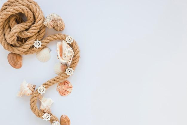 Морские раковины с морской веревкой на белом столе