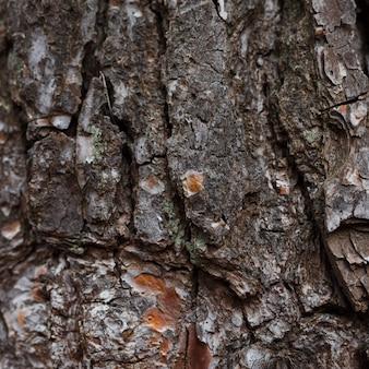 風化した岩のフルフレームの背景