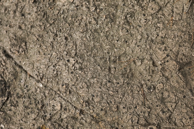 石の背景のマクロ撮影
