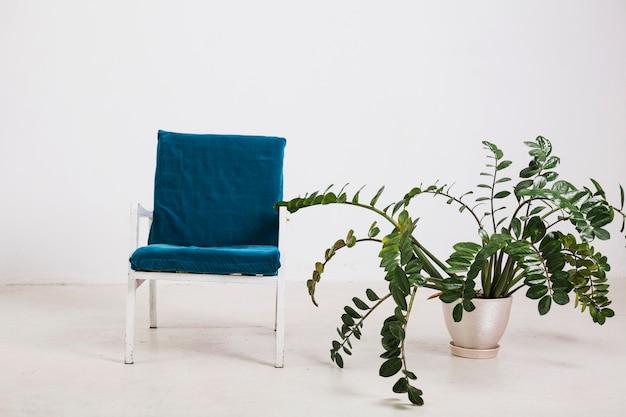 鉢に緑の植物と肘掛け椅子