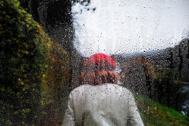 自然の背景に対する雨の影響