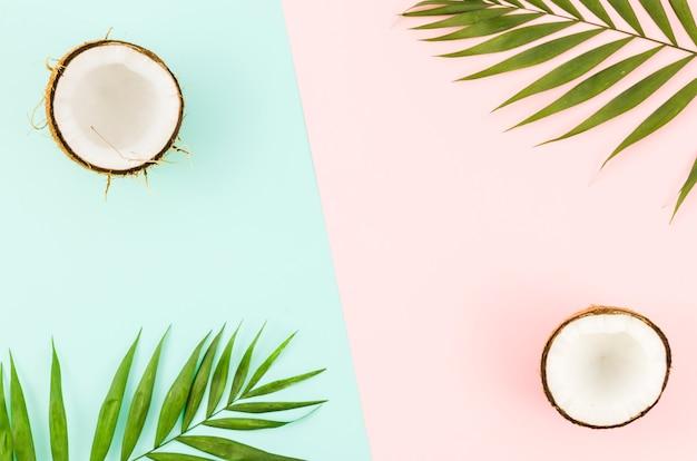明るいテーブルの上のココナッツと緑のヤシの葉