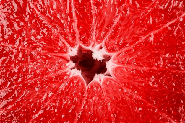 背景としてグレープフルーツの構造のマクロ