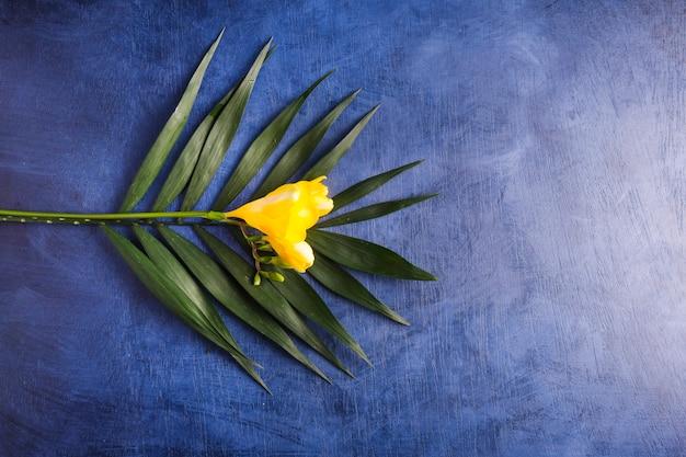 明るい花と熱帯植物