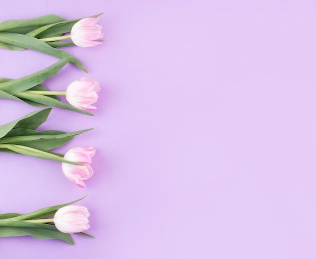 テーブルの上のピンクのチューリップの花