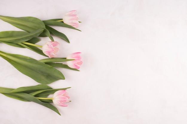 白いテーブルの上のピンクのチューリップの花