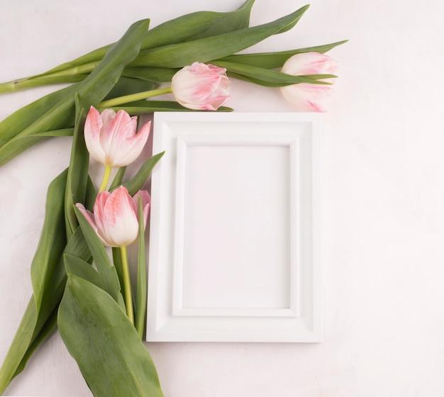 空白のフレームとチューリップの花