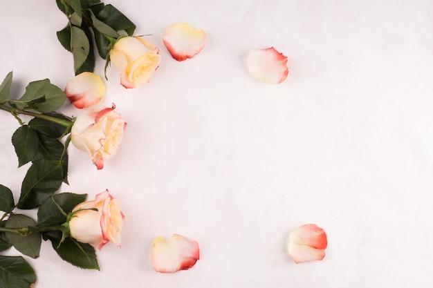 テーブルの上の花びらとバラの花