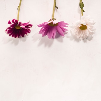 色とりどりの花が白い机の上に配置