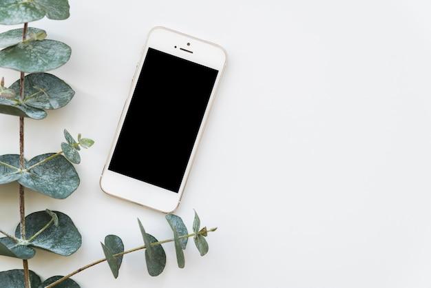 Веточка свежего зеленого растения с смартфон
