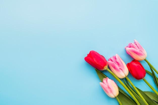 茎にカラフルな新鮮な花の花束