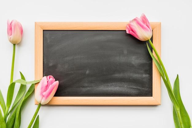 黒板の近くの茎にピンクの新鮮な花