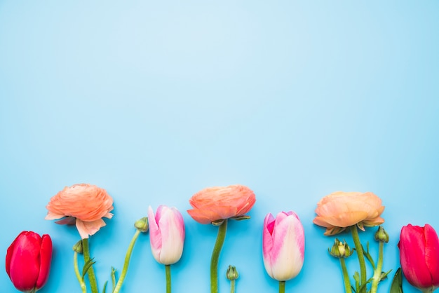 茎の上の様々な花の行