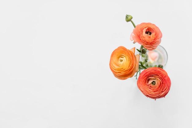 Свежие оранжевые цветы на стеблях в вазе