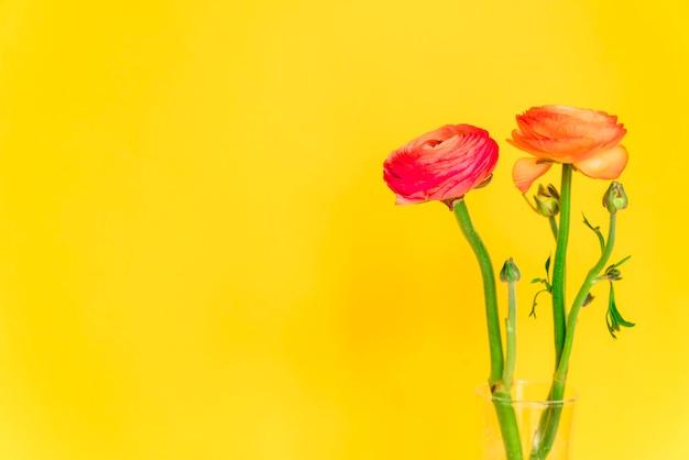 ガラス花瓶の茎に新鮮なオレンジ色の花