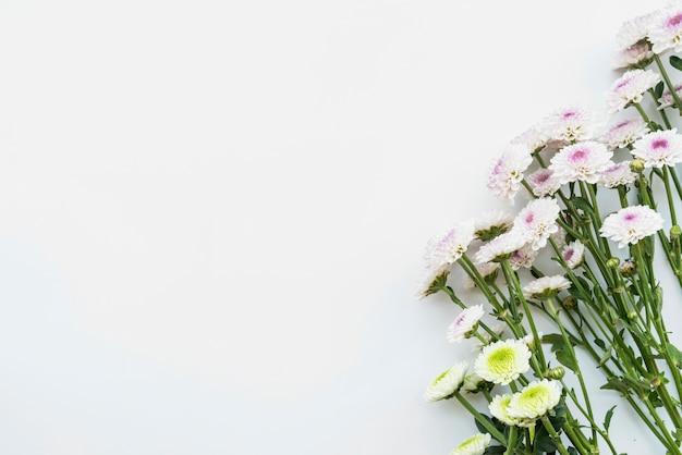 茎に新鮮な黄色と紫の花の束