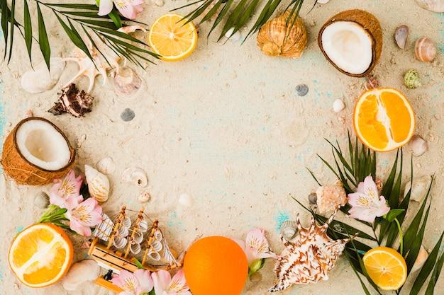 貝殻と果物や花の近くの植物の葉