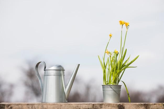 植物と庭の静物