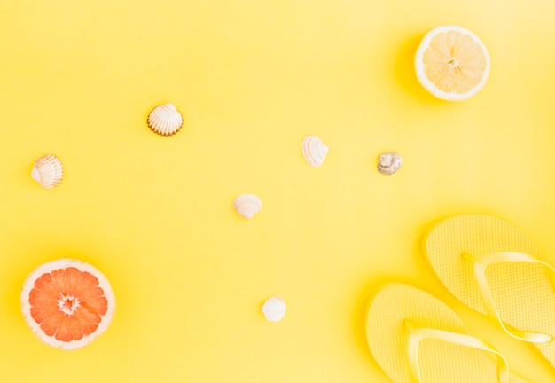 水生貝殻や果物のフラットレイアウト