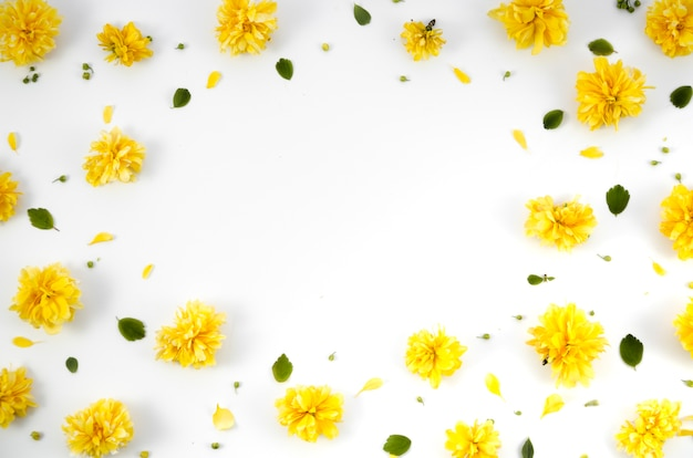 花の装飾的なフレーム