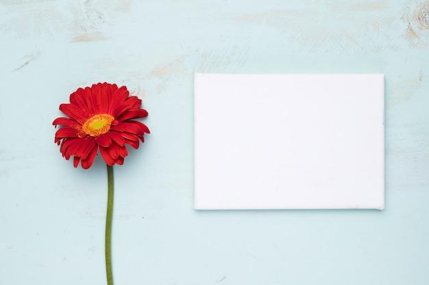 自然の概念と紙のテンプレートのフラットレイアウト