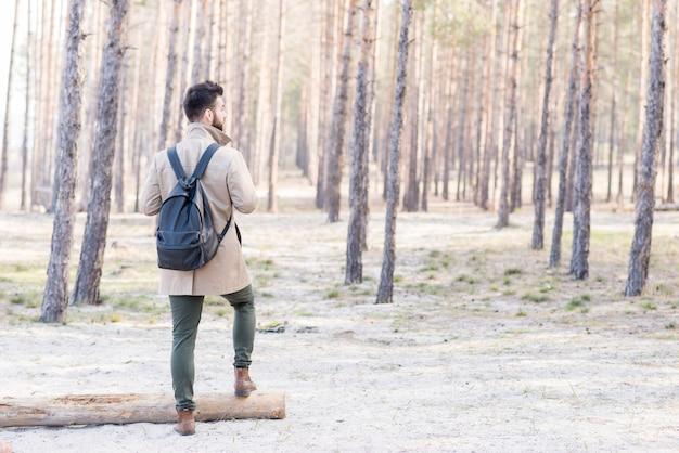 彼のバックパックが森の中で立っていると男性のハイカーの背面図