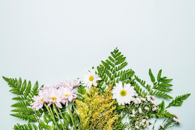 明るい青の背景に緑の花の組成