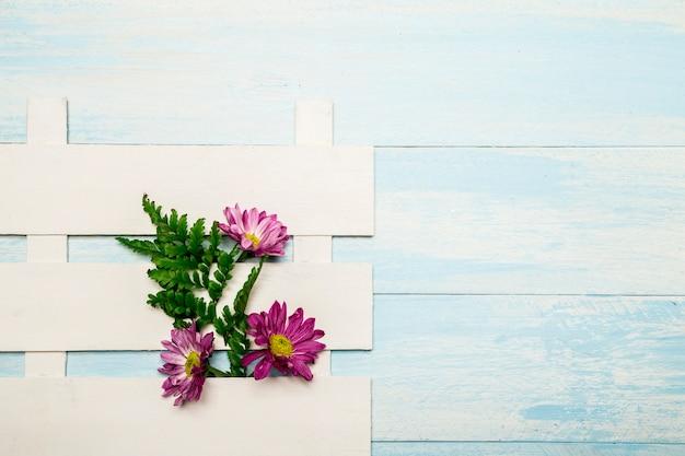 白いフェンスのピンクの花