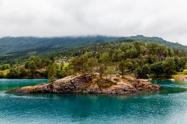 青い湖の丘の上の緑の木々