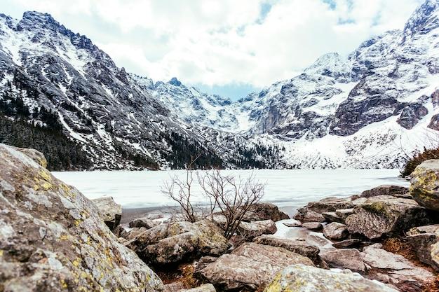 湖と夏の山の近くの岩