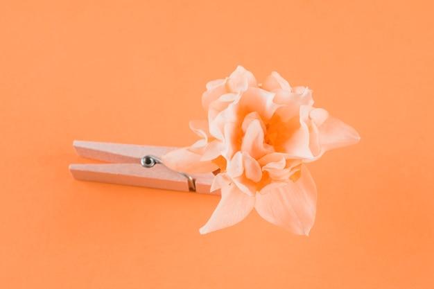 木製の洗濯はさみと桃の背景に花