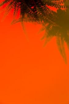テキストを書くためのスペースとオレンジ色の背景に緑のシダの影