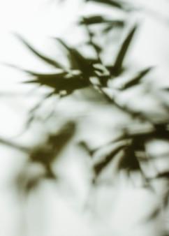 Полный кадр расфокусированным фоном листьев