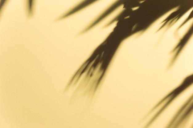 Затуманенное темные листья тени на бежевом фоне