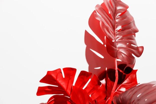 白地に赤いモンステラの葉