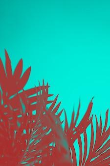 ターコイズブルーの背景に赤いヤシの葉