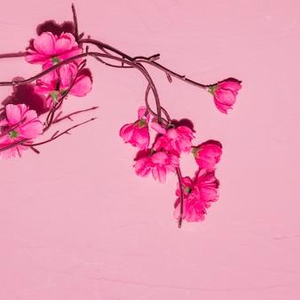 枝にピンクの花