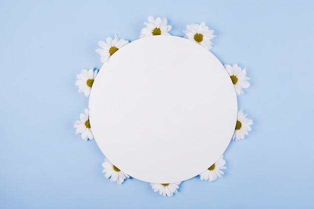 Цветы ромашки в круглой форме