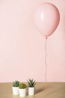 ピンクの風船とサボテン