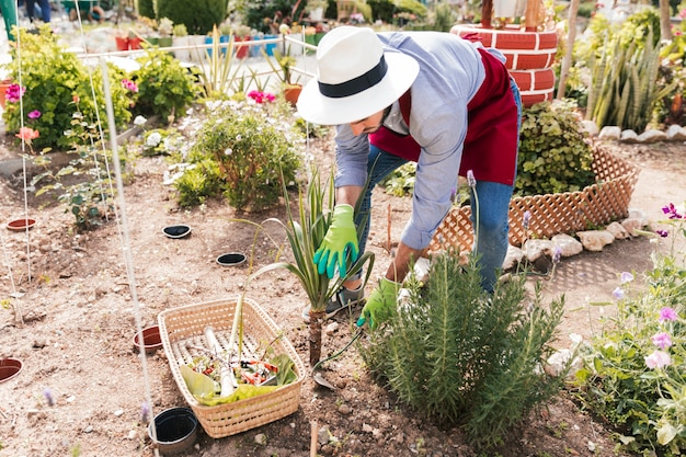 Мужской садовник сажает растения с мотыгой в саду