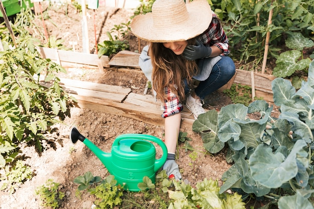 庭の植物に成長している新鮮なイチゴを保持している笑顔の女性の俯瞰