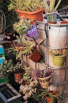 手すりに掛かっている塗られた鍋の新鮮な美しい植物